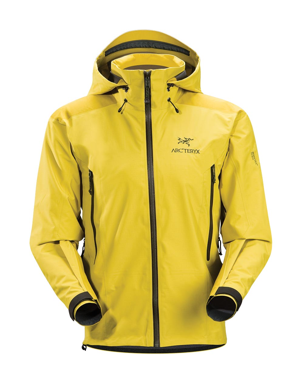 Arcteryx Lichen Beta AR Jacket